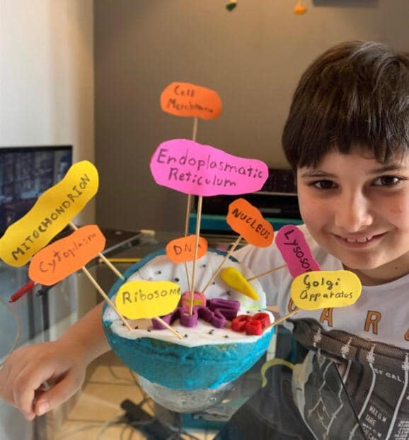 5th Grade Science Project: The animal cell - TAIS Naples